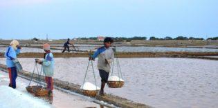 Harga Garam di Brebes, dari Harga Tinggi Kini Mulai Turun Drastis
