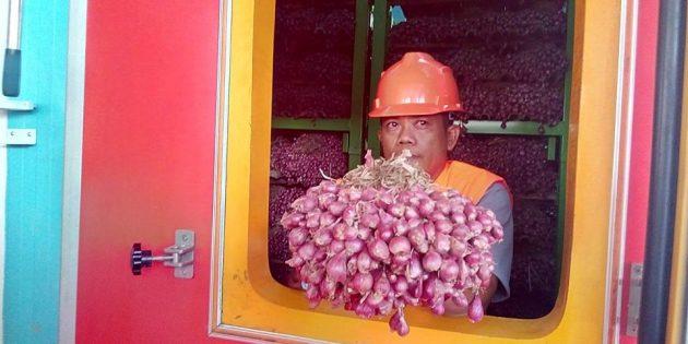 Stabilkan Harga, Dirut Bulog Resmikan Penyimpanan Bawang Merah Modern di Brebes