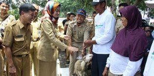 Entaskan RTM,  4 Desa di Kecamatan Brebes dapat Bantuan Ternak